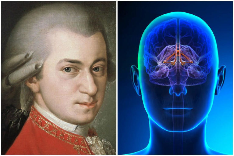 Mozart Effect: How Does Mozart's Music Affect the Brain?
