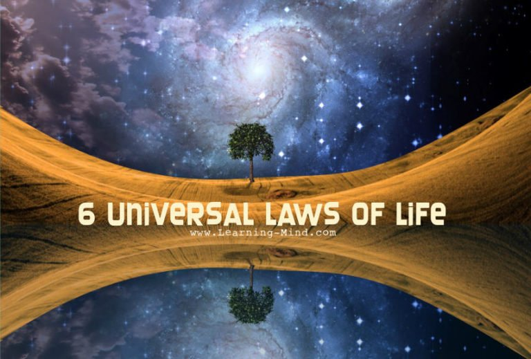 The 6 Universal Laws of Life That Govern Everything