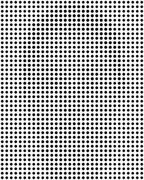 hidden face illusion