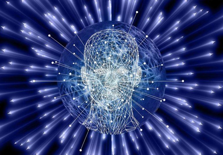 Beauty 'Lights Up' the Brain, Study Finds