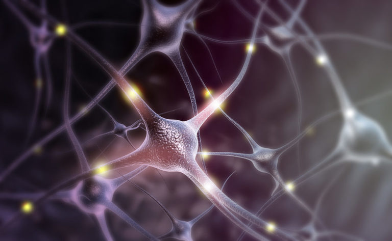 Neuroscience Shows You How to Become More Intelligent