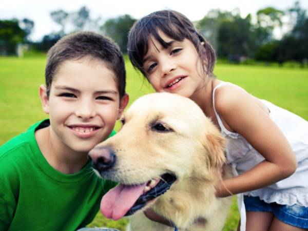 Pet Psychology: Is Getting to Know Your Neighbors Easier with Pets?