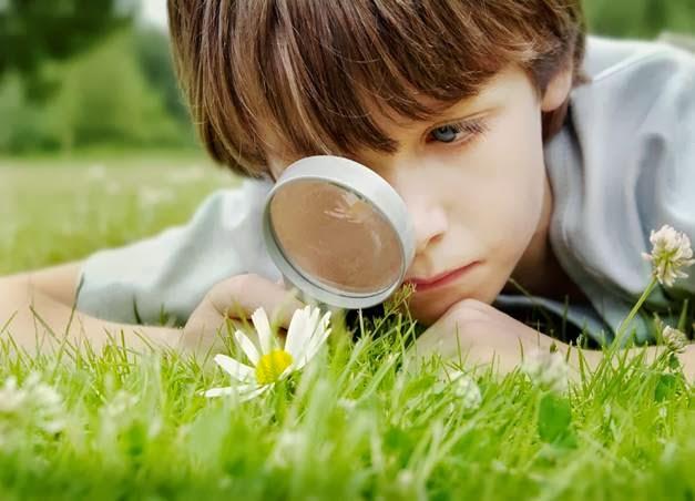 Curiosity Changes Brain Functions