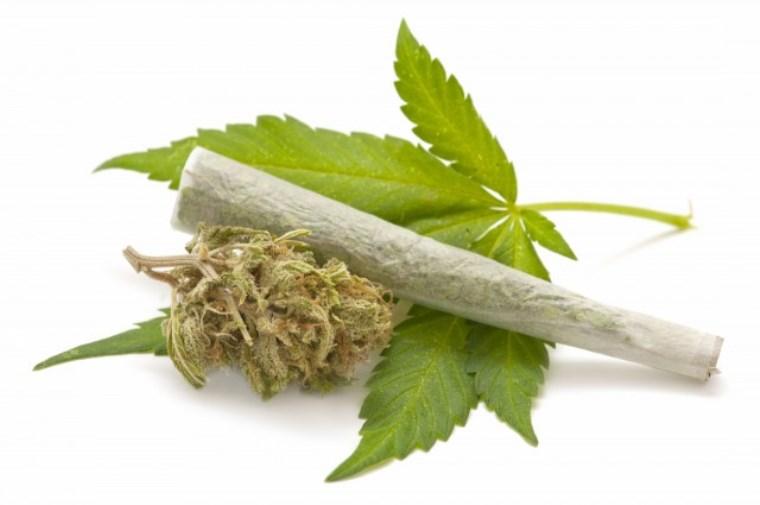 Daily Marijuana Use