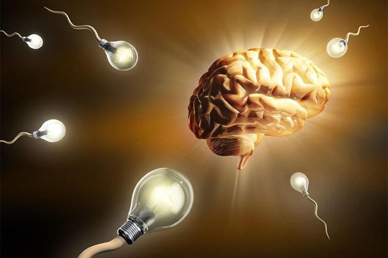 5 Cognitive Enhancement Myths Debunked
