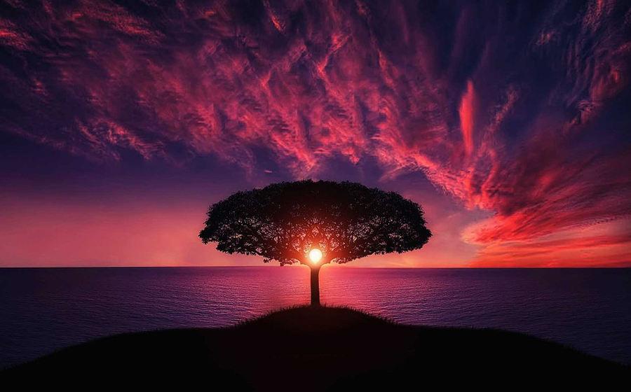 powerful visualization techniquen tree of flow
