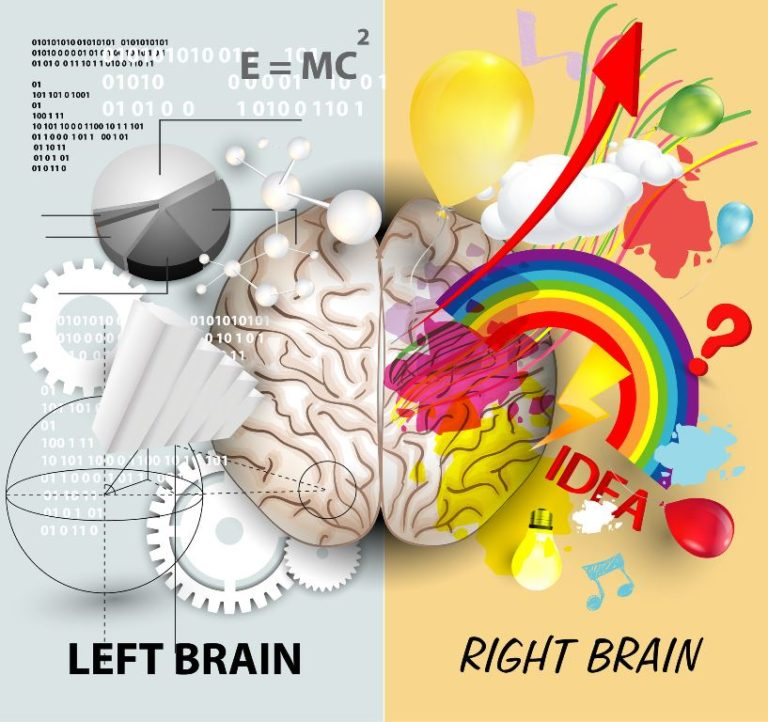 How to Balance and Develop Your Brain Hemispheres
