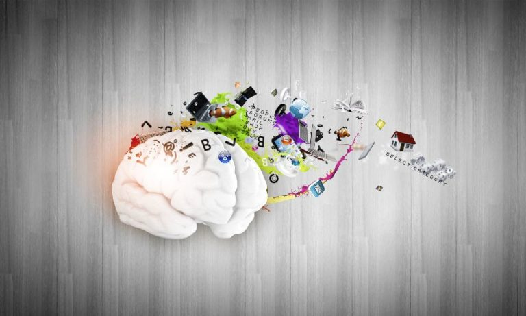 Left vs. Right Hemisphere of the Brain: Which Dominates You?