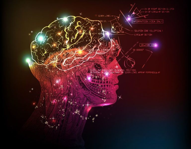 Can Human Consciousness Be Described as a Quantum Effect?