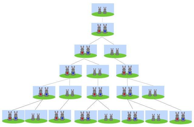 Fibonacci's rabbit analogy