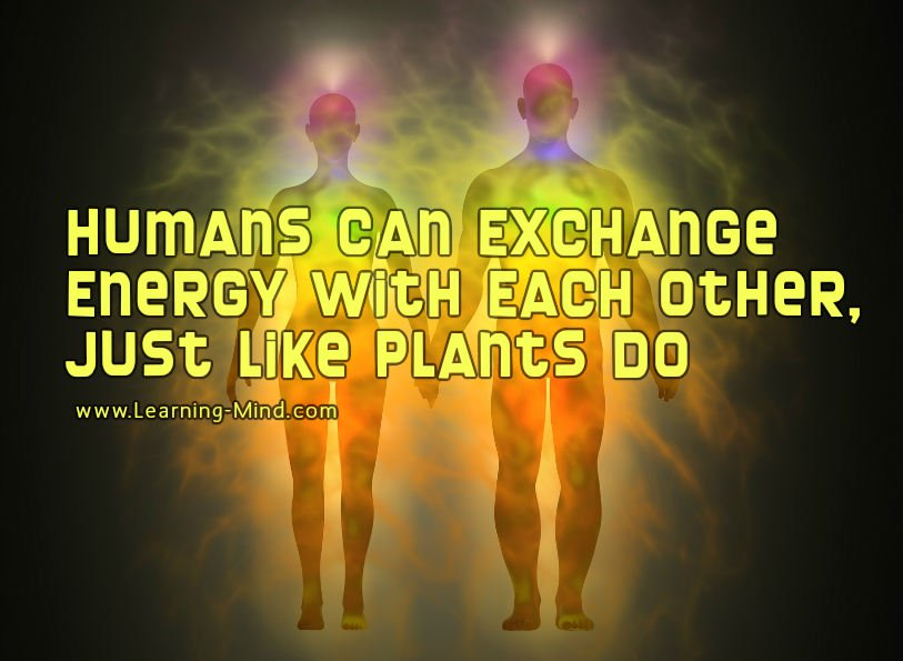 absorb and transfer energy
