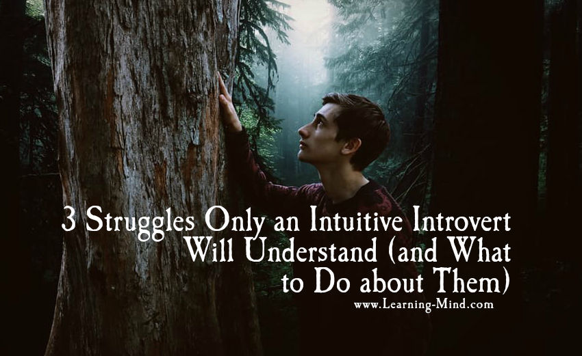intuitive introvert