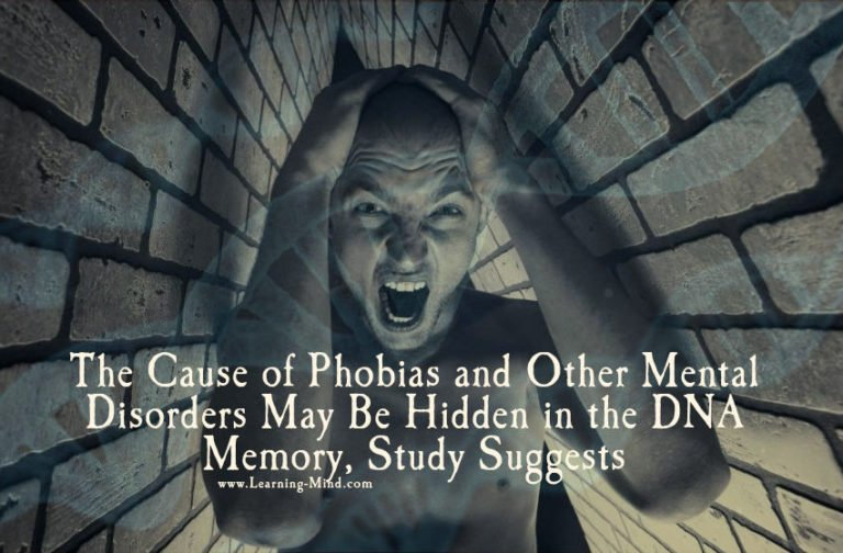 The Cause of Phobias and Other Mental Disorders May Be Hidden in the DNA Memory, Study Suggests