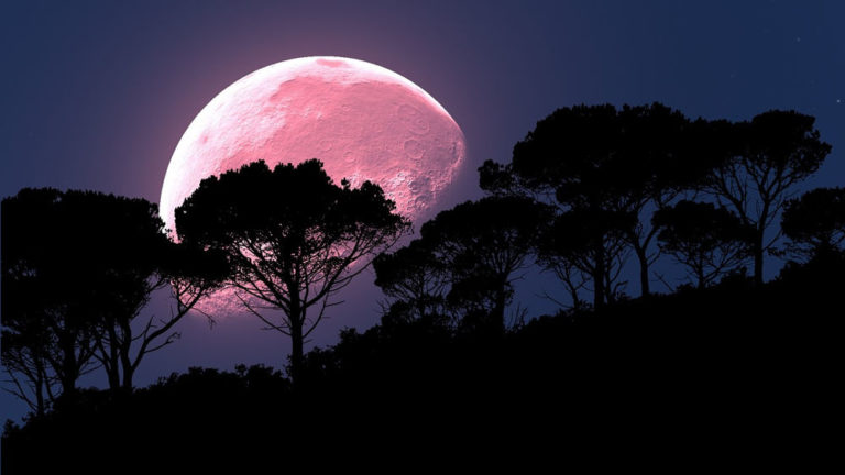 Pink Moon: Don't Miss This April's Special Full Moon!
