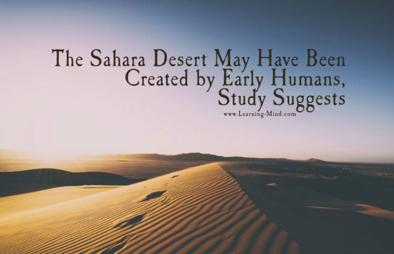 The Sahara Desert May Have Been Created by Early Humans, Study Suggests