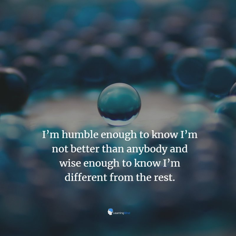 I'm humble enough to know I'm not better than anybody and wise enough to know I'm different from the rest.