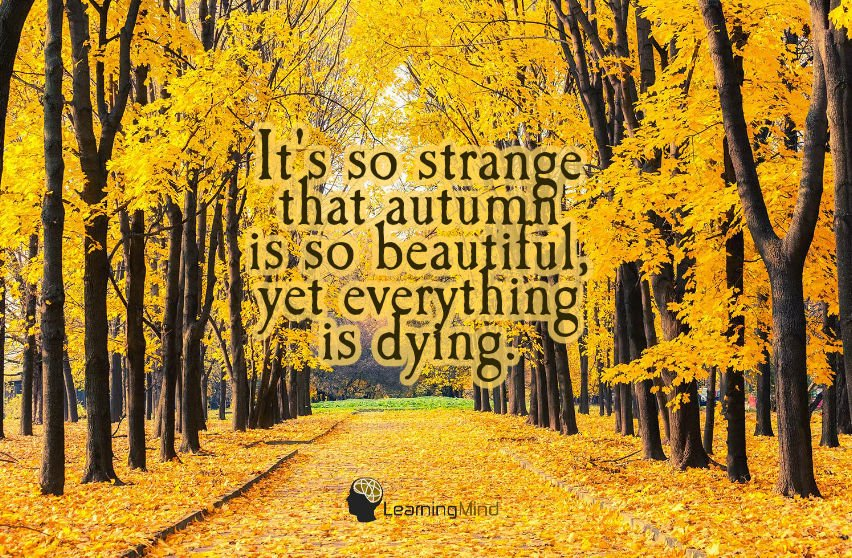 It's so strange that autumn is so beautiful…