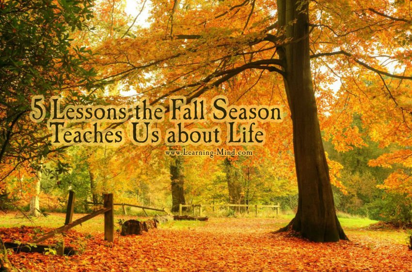 5 Lessons the Fall Season Teaches Us about Life