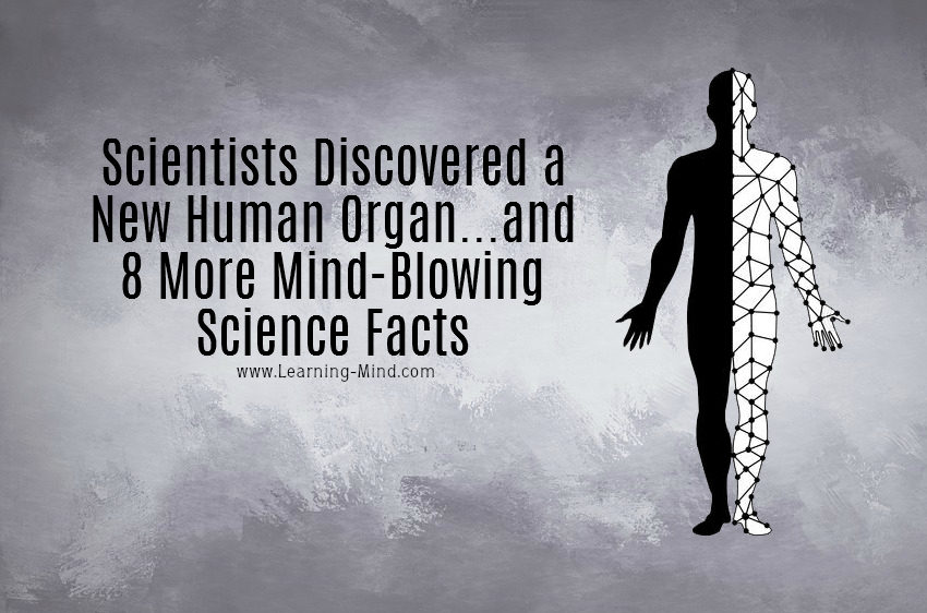 9 Amazing Science Facts from Recent Studies That Will Blow Your Mind
