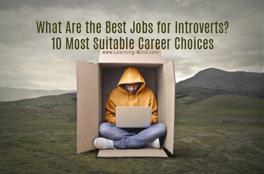 What Are the Best Jobs for Introverts? 10 Most Suitable Career Choices
