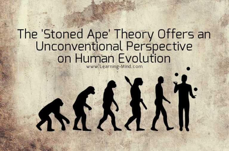 The Stoned Ape Theory Offers an Unconventional View of Human Evolution