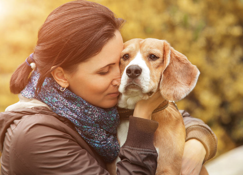 therapy dogs for depression