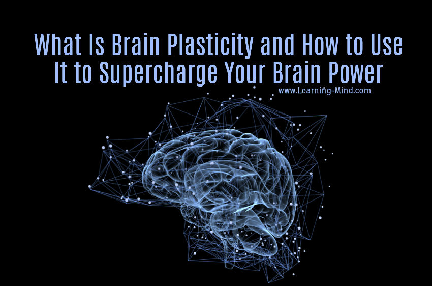 What Is Brain Plasticity and How to Use It to Supercharge Your Brain Power