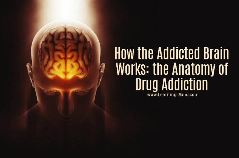 How the Addicted Brain Works: the Anatomy of Drug Addiction