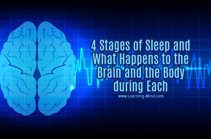 4 Stages of Sleep and What Happens to the Brain and the Body during Each