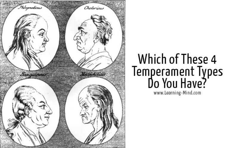 What Temperament Psychology Reveals about Your Personality