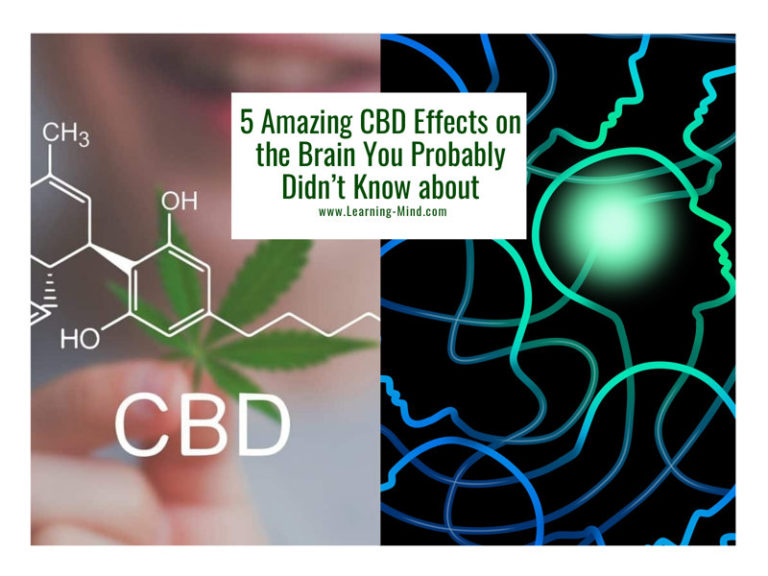 5 Amazing CBD Effects on the Brain You Probably Didn't Know about
