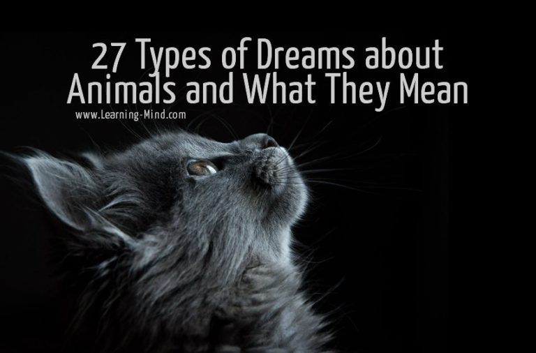 27 Types of Dreams about Animals and What They Mean