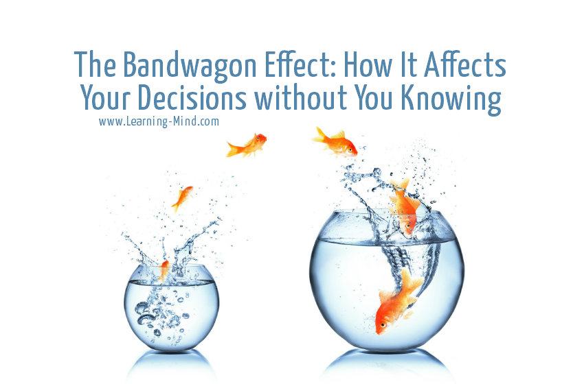 bandwagon effect decisions