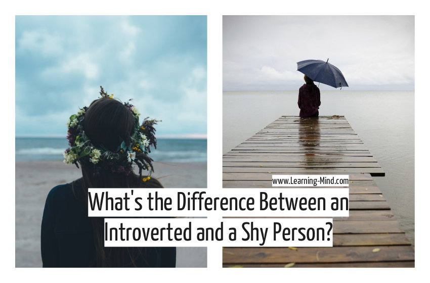 introverted and shy person difference