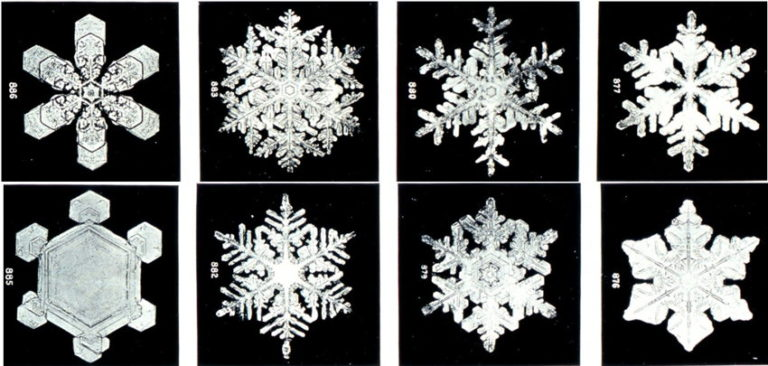 19th-Century Photos of Snowflakes Under a Microscope Show the Captivating Beauty of Nature's Creations