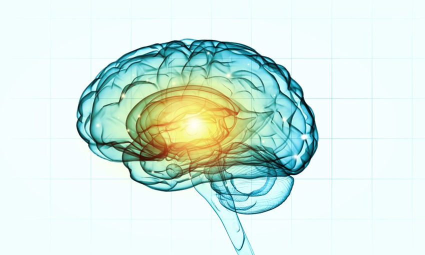 Theories of Intelligence in Psychology