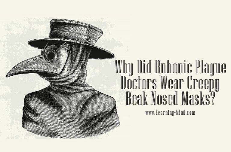 Why Did Bubonic Plague Doctors Wear Creepy Beak-Nosed Masks?