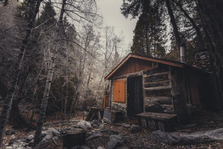 5 Signs of Cabin Fever and How to Deal with It