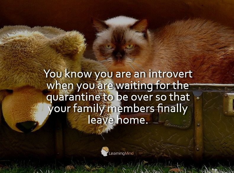 You know you are an introvert when you are waiting for the quarantine to be over so that your family members finally leave home.
