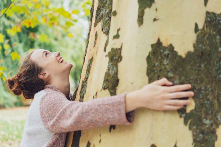 Tree-Hugging Encouraged in Iceland as a Way to Cope with Isolation